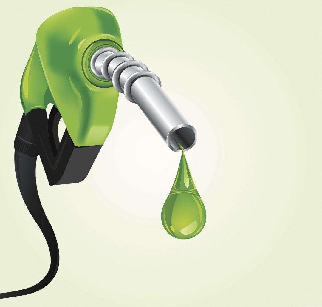 Gasoline: A Designer Product for the Whole World